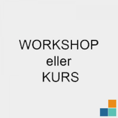 Workshop eller kurs med Nettpilot